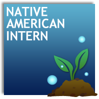 Native American Intern
