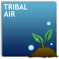 Tribal Air