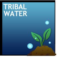 Tribal Water